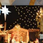 Christmas Star Specialty And celebrations - Sakshi